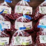 11月14日(土)神戸市にて有機野菜販売します!