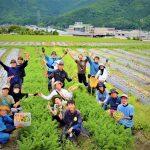 第4期生の募集開始 ~「農」への一歩、丹波で踏み出す。~